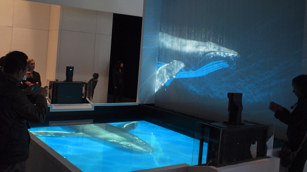 Pool 3D Mapping & Waterscreen